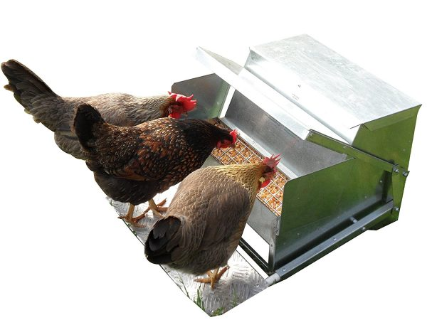 Grandpa's Feeders Automatic Chicken Feeder - Standard